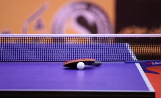 قهرمانی شایان ملکی در مسابقات  دسته دو تنیس روی میز کشور