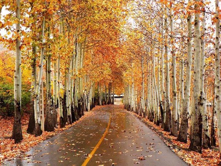 برنامهی کلاسها و سانسهای پاییز و زمستان ۱۳۹۵